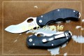 NAVY Knives K-617黑色全刃大田鼠